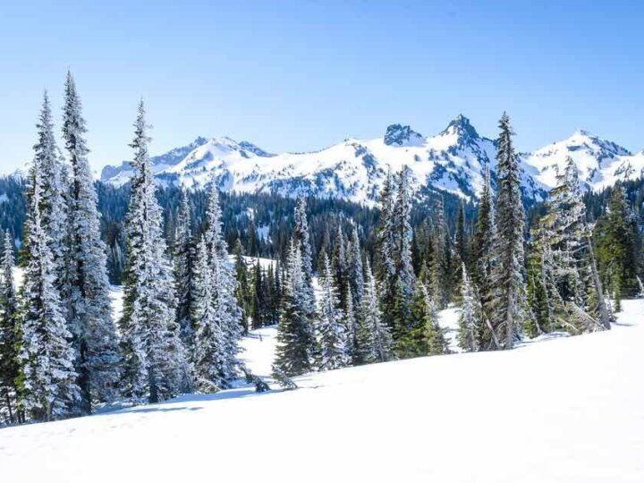 Best Winter Weekend Getaways from Seattle featured by top Seattle travel blogger, Marcie in Mommyland: Image of Mount Rainier National Park in Winter