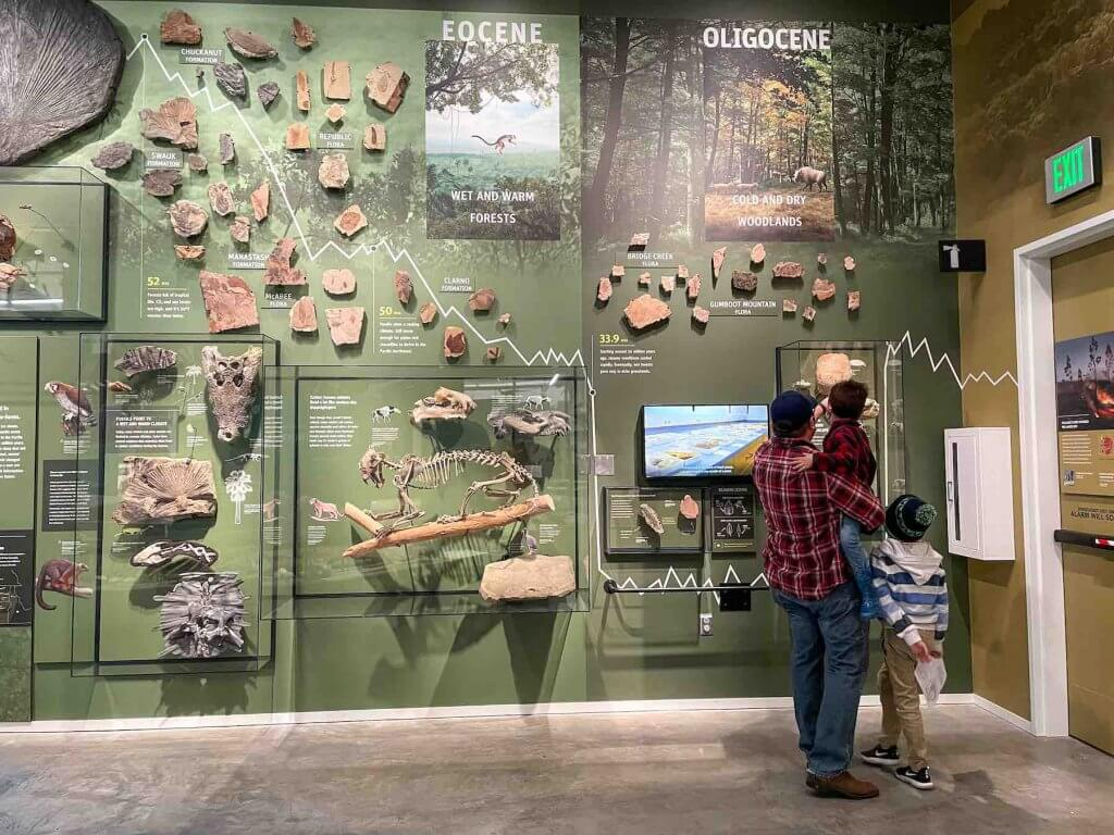 Find out how to visit the Seattle Burke Museum with kids. Image of a dad and two boys looking at a large green wall filled with fossils.