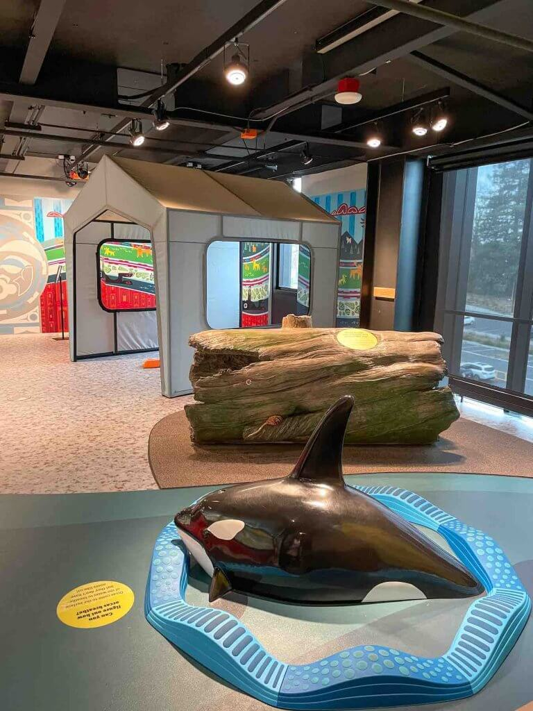 Is the Burke Museum in Seattle for kids? Check out this cute indoor play area perfect for little ones. Image of an indoor play area with a climbable orca, a log, and a tent.