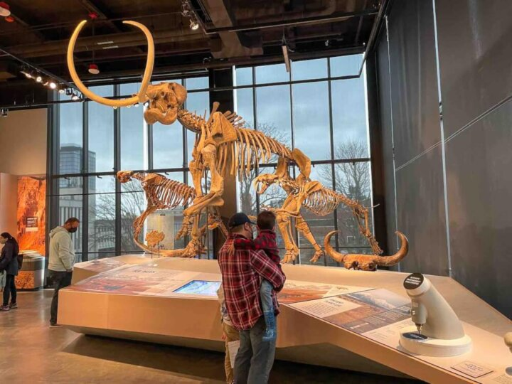 Find out how to visit the Burke Museum in Seattle with kids by top Seattle blogger Marcie in Mommyland. Image of a dad and son in front of a dinosaur fossible.