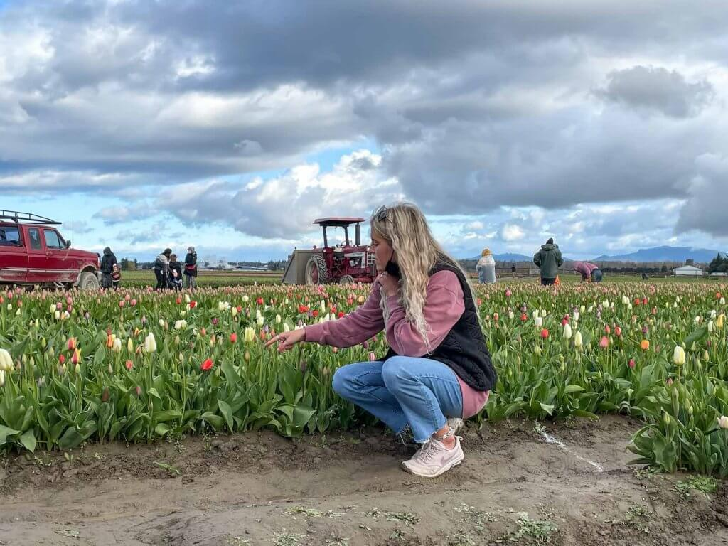 Image of a woman kneeling next to a tulip field in Skagit Valley.