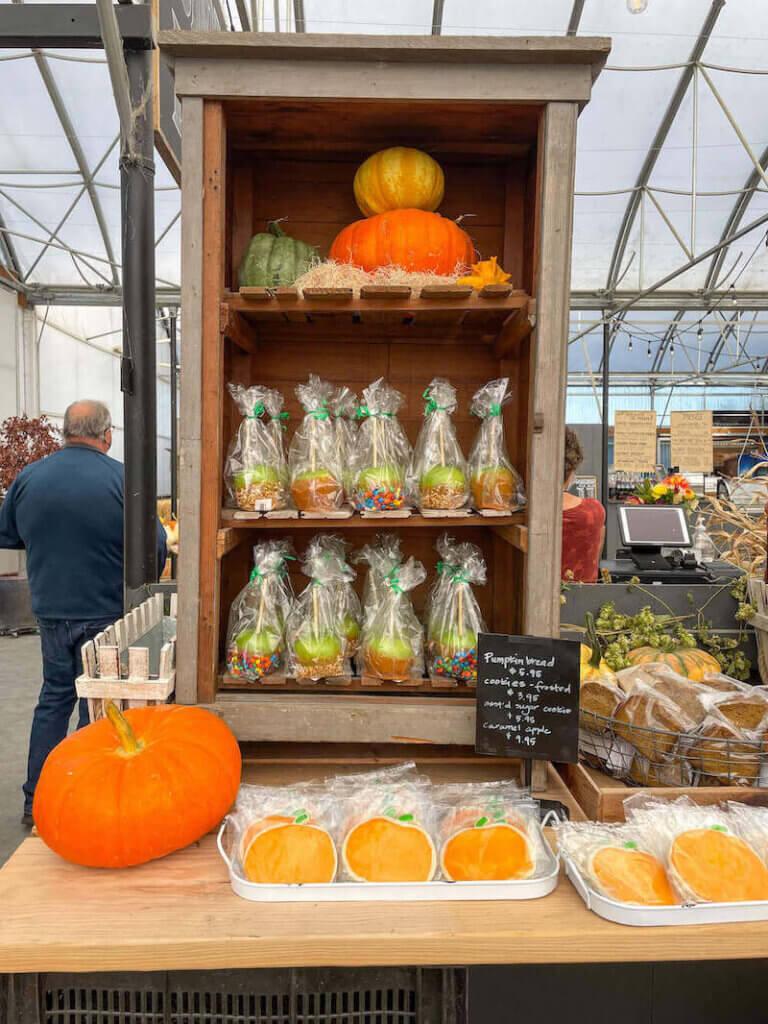 Image of caramel apples, pumpkin cookies, and pumpkin bread slices.