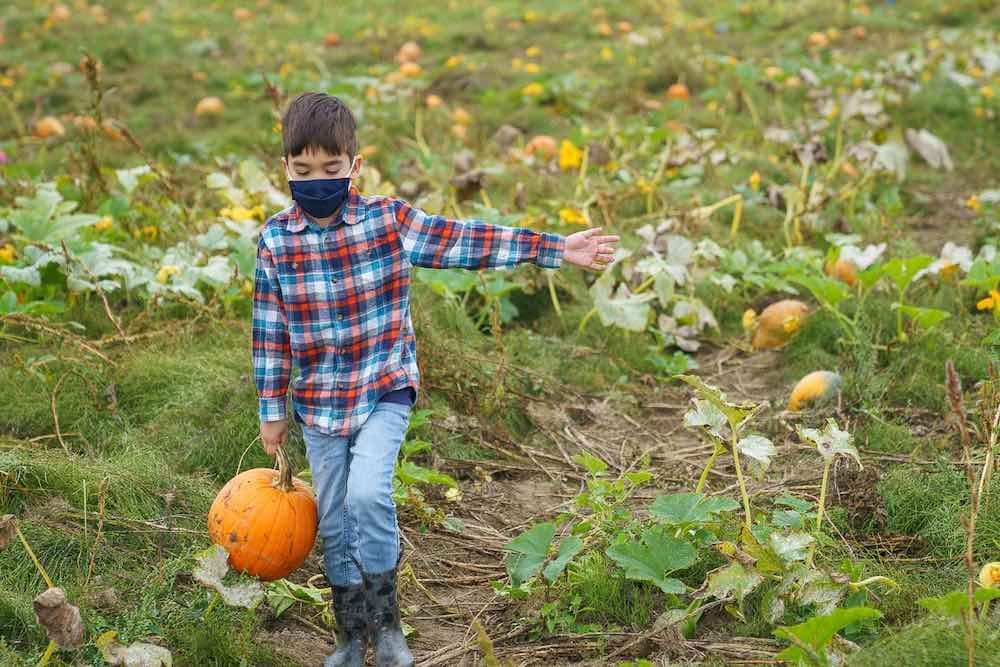 Image of a boy carrying a pumpkin at Gordon Skagit Farms in Washington State.