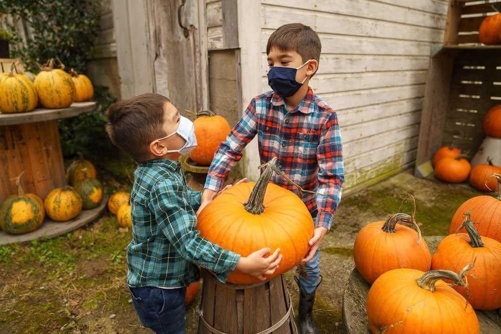Image of two boys wearing plaid carrying a big pumpkin at Gordon Skagit Farms, a pumpkin patch in Washington State.