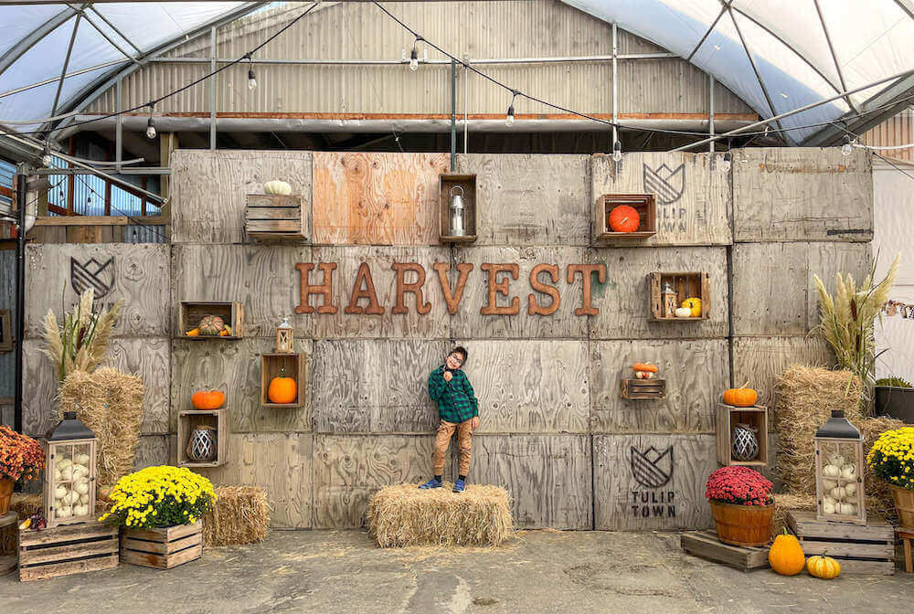Image of a boy standing on a bale of hay with a sign that says Harvest in the background.