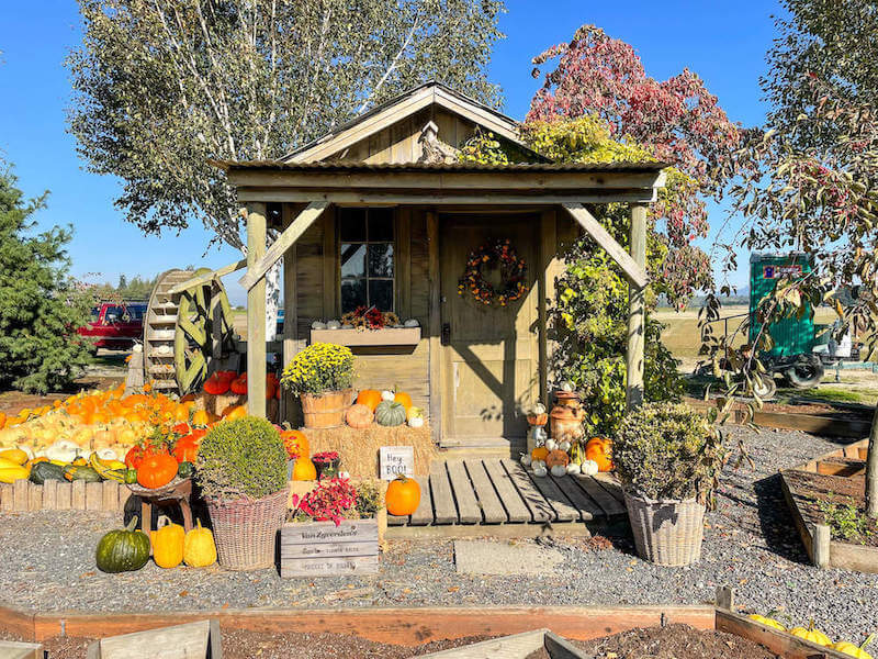 Image of a little tiny house decorated for fall.