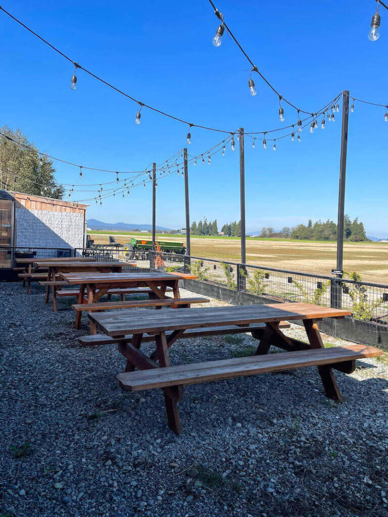 Image of outdoor picnic tables in the shade.