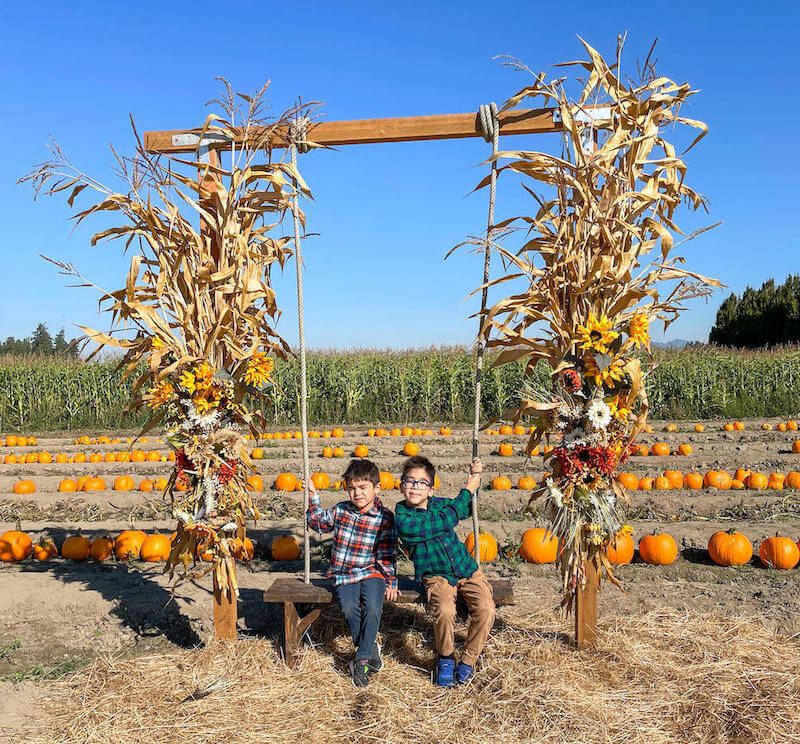 Image of two boys posing on a bench swing with pumpkins in the background.