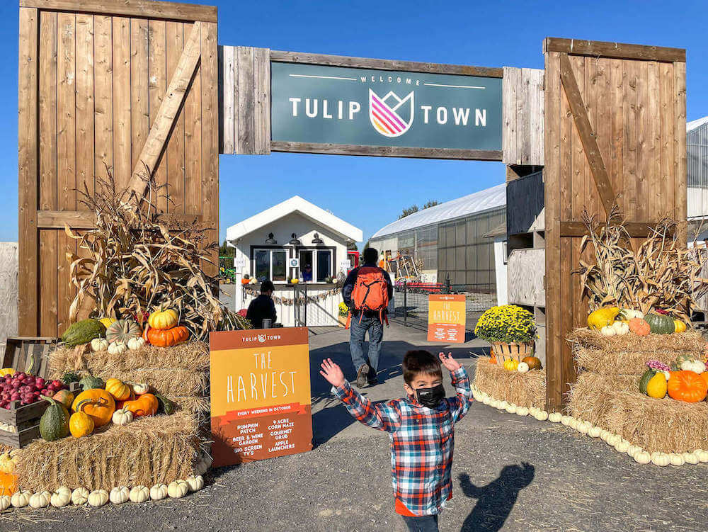 Get all the top tips for exploring The Harvest at Tulip Town by top Seattle blog Marcie in Mommyland. Image of a boy posing in front of the Tulip Town sign.