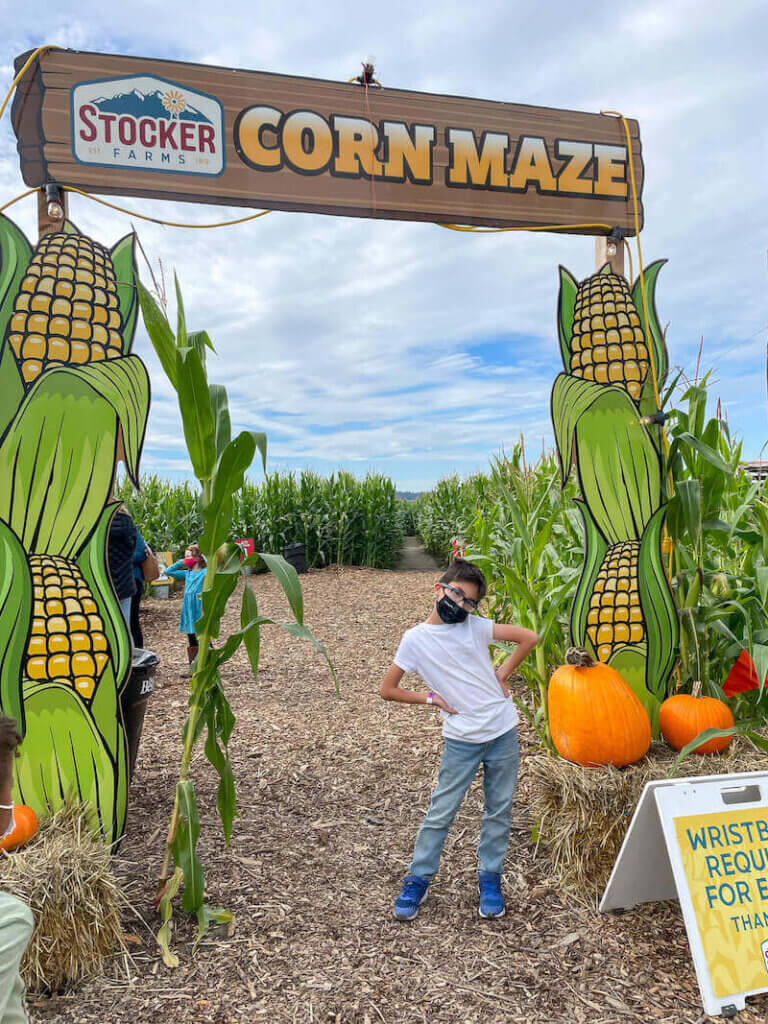 Image of a boy posing in front of the Stocker Farms corn maze entrance in Snohomish, WA.