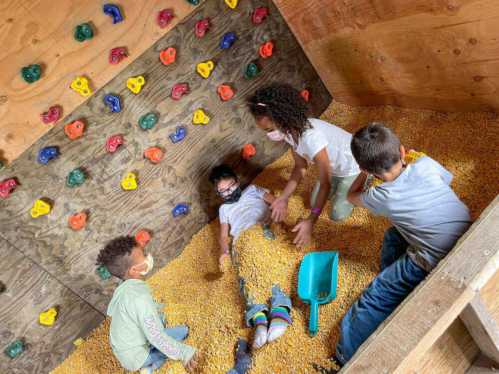 Image of kids covering another kids with corn kernels inside the Stocker Farms corn pit.