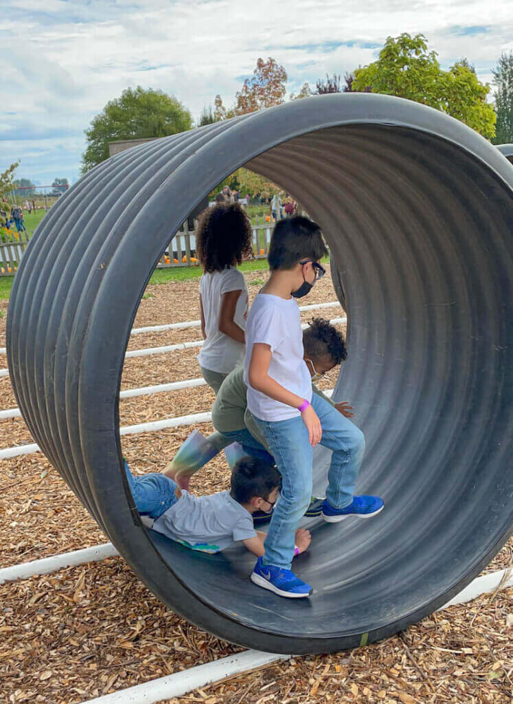 Image of 4 kids inside a giant corrugated pipe.