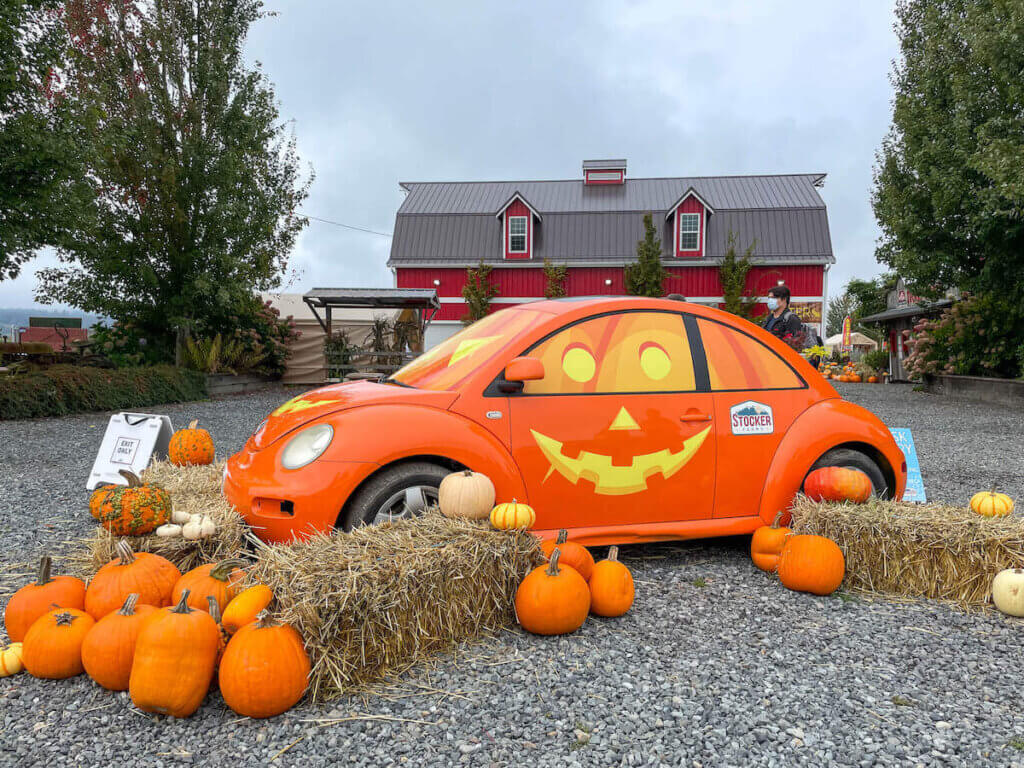 There are so many cute photo spots at Stocker Farms pumpkin patch including this adorable jack-o-lantern car. Image of a bright orange car with a jack-o-lantern smile painted on the side.