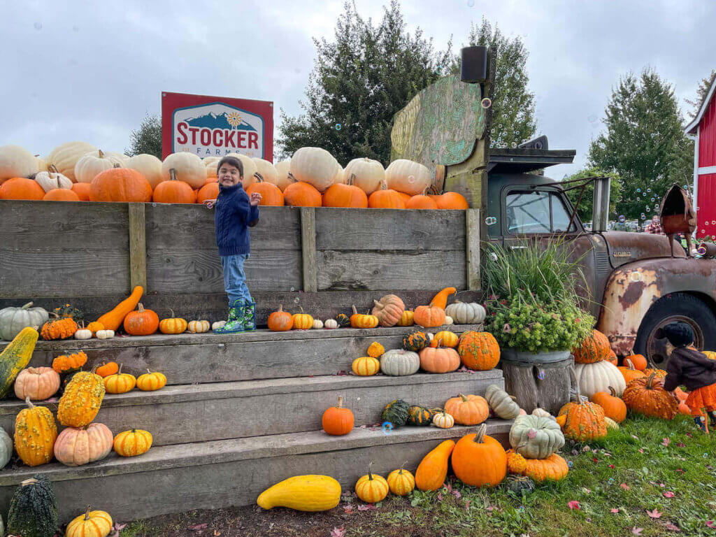 Image of a boy smiling on top of stairs covered with pumpkins next to a big truck.