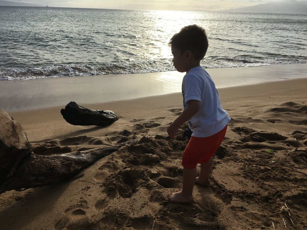 Ka`anapali beach with a toddler