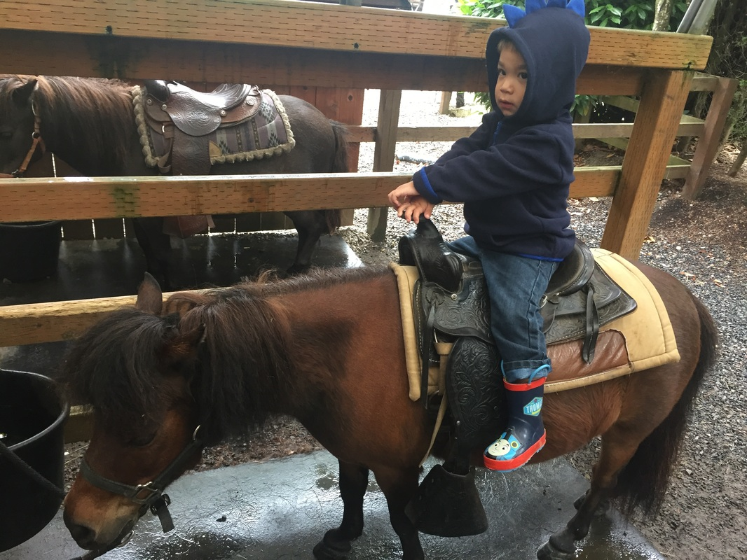 Pony Ride at Remlinger Farms in Carnation, WA